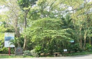 hutan malabar